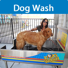 Home weiss guys car wash several of our locations now have a self serve dog wash featuring stainless steel tub with ramp collar attachment warm water shampoo conditioner solutioingenieria Images