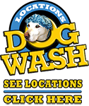 dogwash-side88